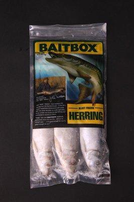 Baitbox Frozen Herring