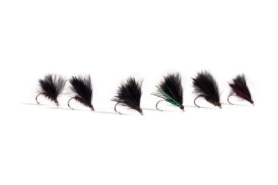 FAF Cormorant Selection