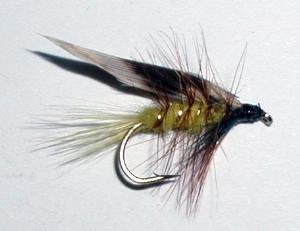 Stillwater Invicta (1 Dozen)