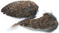 Veniard English Partridge Wings