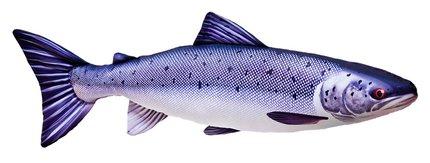 Gaby Salmon Fish Pillow