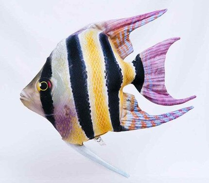 Gaby Freshwater Angelfish Pillow 51cm