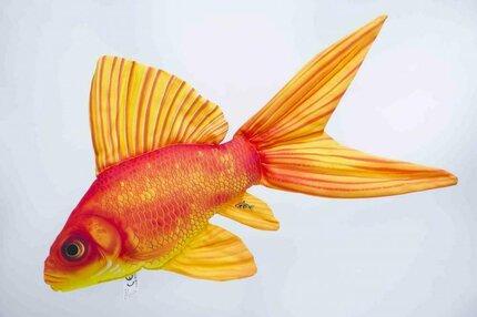 Gaby Gold Fish Pillow 60cm