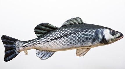 Gaby Sea Bass Pillow