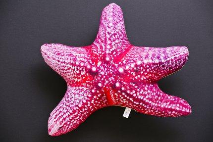 Gaby Starfish Pillow