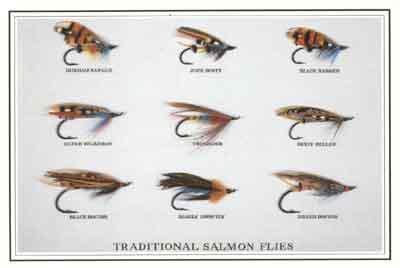 Just Fish Traditional salmon flies postcard