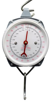 Lineaeffe 100kg 220lb Spring Balance Scales