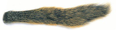 Veniard Fox Squirrel Tail