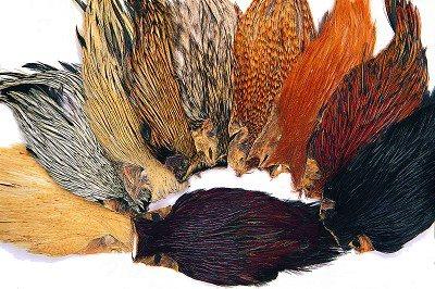 Veniard Indian Cock Cape