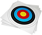 Armex 24 X 24in Archery Target Faces 1pc