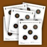 Bisley Five Target on Economy Grade Paper