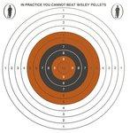 Bisley Single Target on Economy Grade Paper