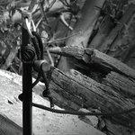 Cygnet Sniper Bank Stick