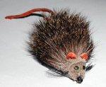 Stillwater Pike Fly Rat 4/0 (1 Dozen)