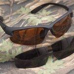 Gardner Sunglasses 1