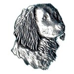 Just Fish Pewter Lapel Pin Spaniel Head