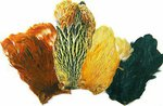 Veniard Assorted Hen Capes 4 Pack