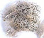 Veniard English Partridge Mixed Hackles